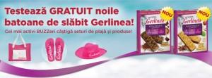 Gerlinea-SummerAD-Buzzstore-FacebookCover